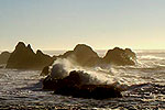Waldport, Seal Rock