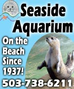 Feed the seals! One of the oldest aquariums in the U.S. is here in Seaside, Oregon, right on the Promenade
