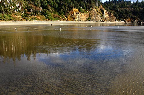 It S Almost Time To Put On Your Walking Shoes Take A Tour Through Cannon Beach