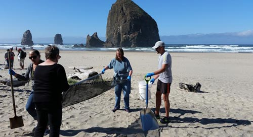 Beach Cleanups This Month on N. and Central Oregon Coast
