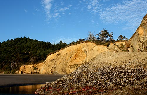 A Multitude of Finds, Unusual Features at N. Oregon Coast's Hug Point