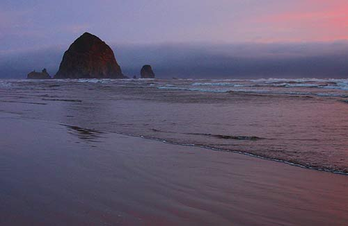 Nature Walks, Talks Part of Oregon Coast Beach Bill Party in Cannon Beach