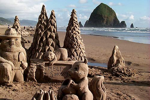 June Highlights of Oregon Coast: Music, Kites, Sandcastles