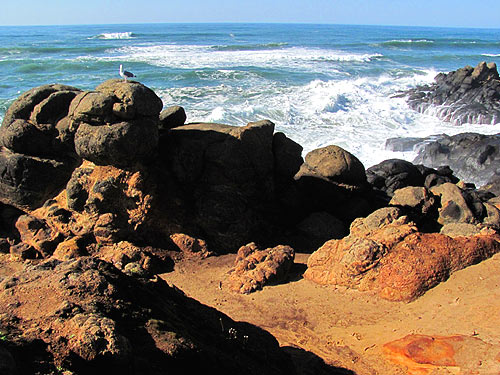 A Hidden Oregon Coast Favorite: Fishing Rock State Rec Site, Lincoln Beach