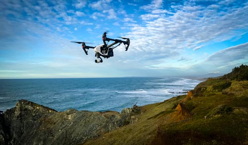 Drone Rules, Laws for Oregon Coast: Stay Away from Wildlife or Face Fines