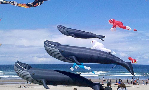 Central Oregon Coast Kite Festival Attracts Monster Creations