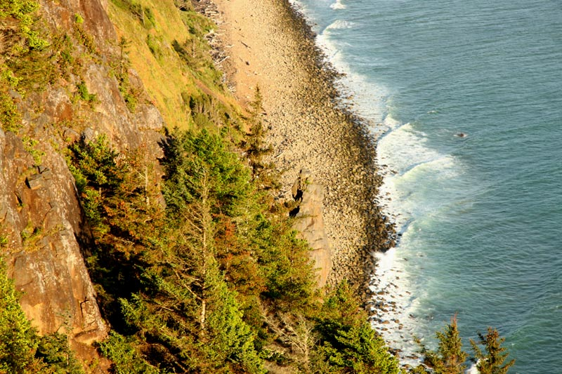 Vegas Firm Offers Cycling Tour of Half of Oregon Coast