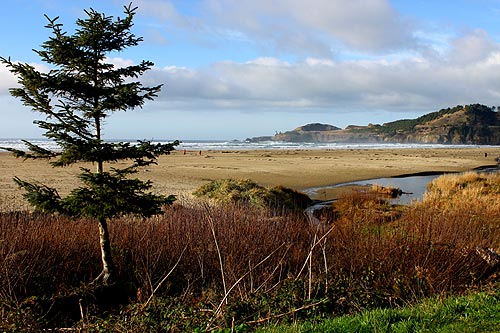 Agate Beach in Newport