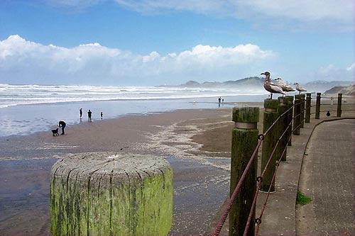 Nye Beach Turnaround Newport Beaches Landmark Virtual Tour Of Oregon Coast