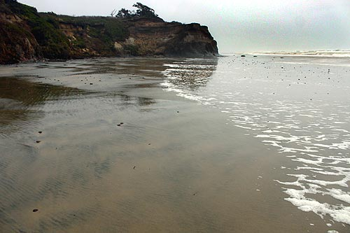 South Beach Oregon Between Seal Rock And Newport S Area A Tiny Bit Of The Mp 146 Marker Sits Hidden Central Coast