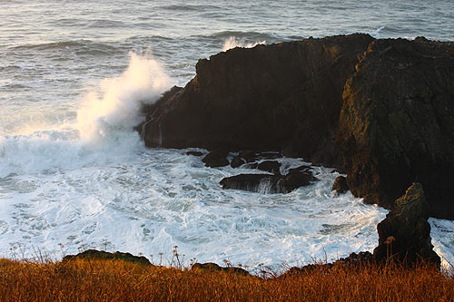 waves could be like this over the week: Newport's Yaquina Head