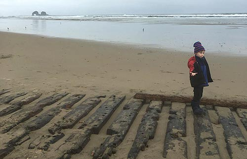 Rare, Ghostly Shipwreck Emerges Again on Oregon Coast