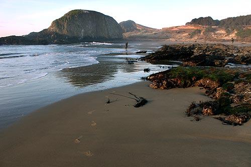 Seal Rock Ocean Waters